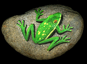 Frog Rock Painting Ideas